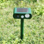 Répulsif chat ultrason solaire : pour repousser les félins